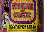 CARNIVAL OF COLOR Image