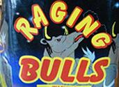 RAGING BULLS Image
