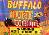 BUFFALO HUNT Image