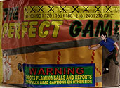 THE PERFECT GAME Image