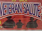 VETERAN SALUTE Image