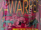 WARPED Image